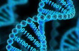 KTU mokslininkai kuria pažangias mikrosistemas
