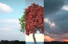 Europos žaliasis kursas. Siekis tapti pirmuoju neutralaus poveikio klimatui žemynu